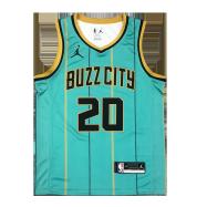 Charlotte Hornets Jersey Hayward #20 Custom NBA Jersey